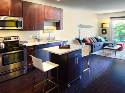 Luxury North Loop 2BR