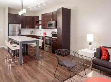 Gorgeous Downtown Minneapolis 1 Bed!