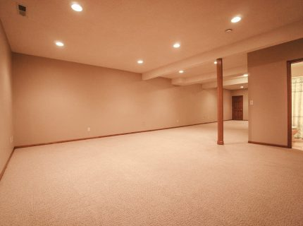 Large Finished Basement